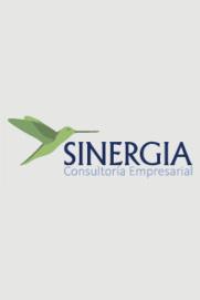 Sinergia Consultoría Empresarial S.A.S.