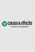 Causa & Efecto S.A.S.