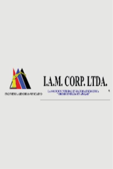 ESCO I.A.M. Corp_Economice LTDA.