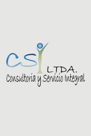 Consultoría y Servicio Integral LTDA.